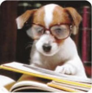 cão lendo
