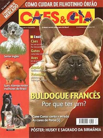 Capturar (Copy) buldogue frances (121)