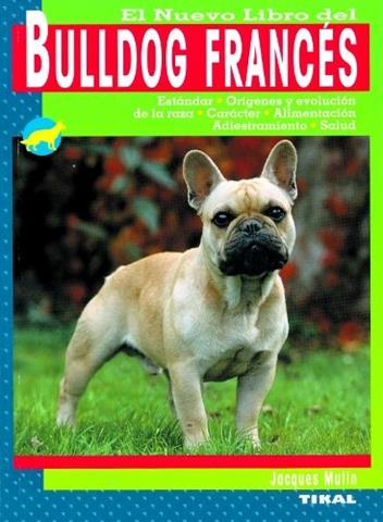 Capturar (Copy) buldogue frances (122)
