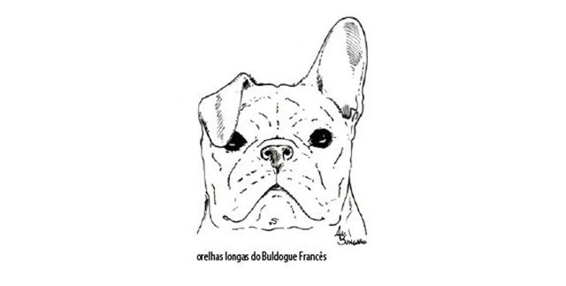 Capturar (Copy) buldogue frances (63)