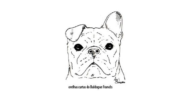 Capturar (Copy) buldogue frances (64)