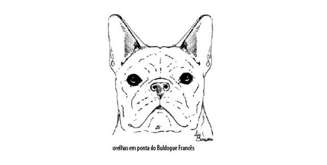 Capturar (Copy) buldogue frances (66)