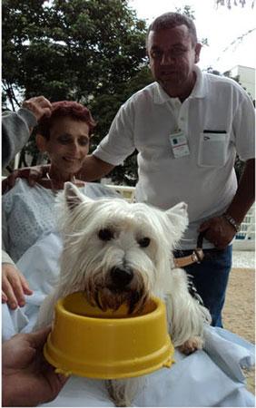 Cão tomando água