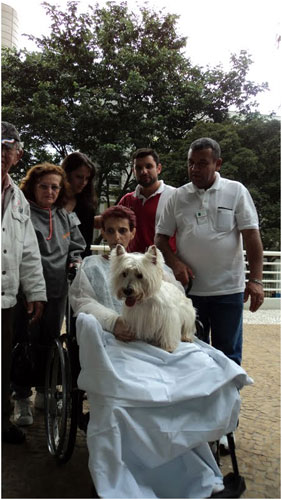 Cão com paciente