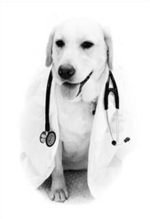 Cão médico