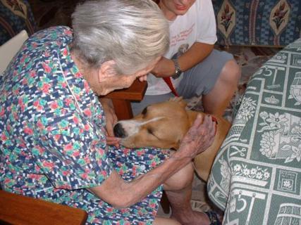 Cão com mulher idosa