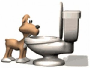 Ilustração Cão na privada