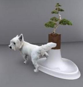 Sanitário de Cachorro