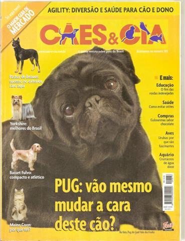 pug 64 (Copy)