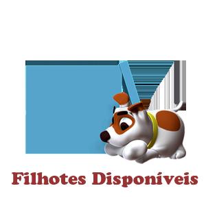 mod_filhotes_disponiveis
